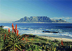 indian travel insurance for South-Africa