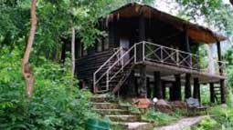 tyda-nature-camp